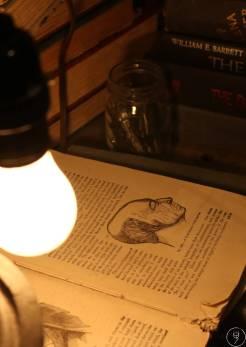ampoule livre