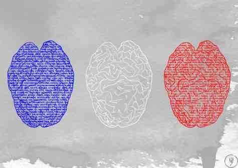 drapeau cerveau